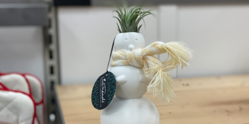 LiveTrends Ceramic Snowman With Air Plant Just $7.99 at Target
