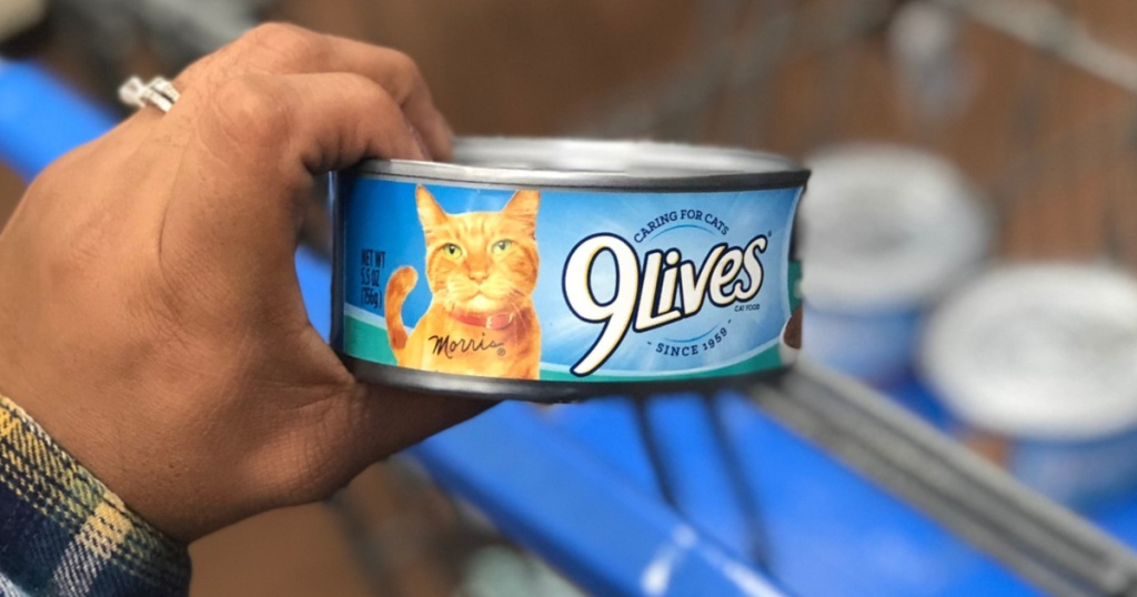 Hand holding 9lives wet cat food