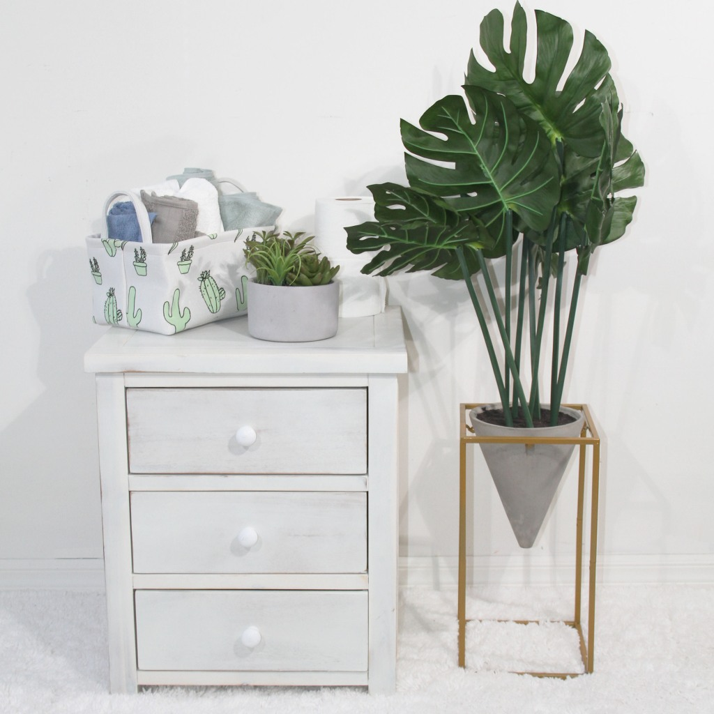 Cactus Bin on end table