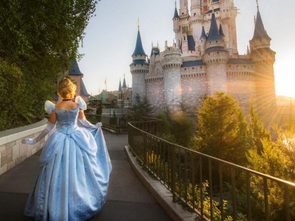 Cinderella costume at disney park