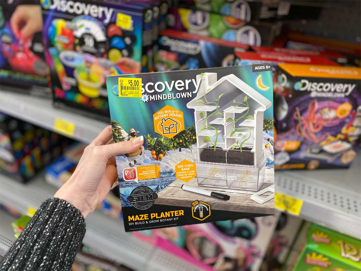 hand holding Discovery Kids DIY Maze Planter