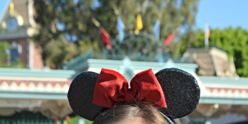 Walt Disney World Park Changes: Reservation & Face Mask Now Required, Limit One Park Daily & More