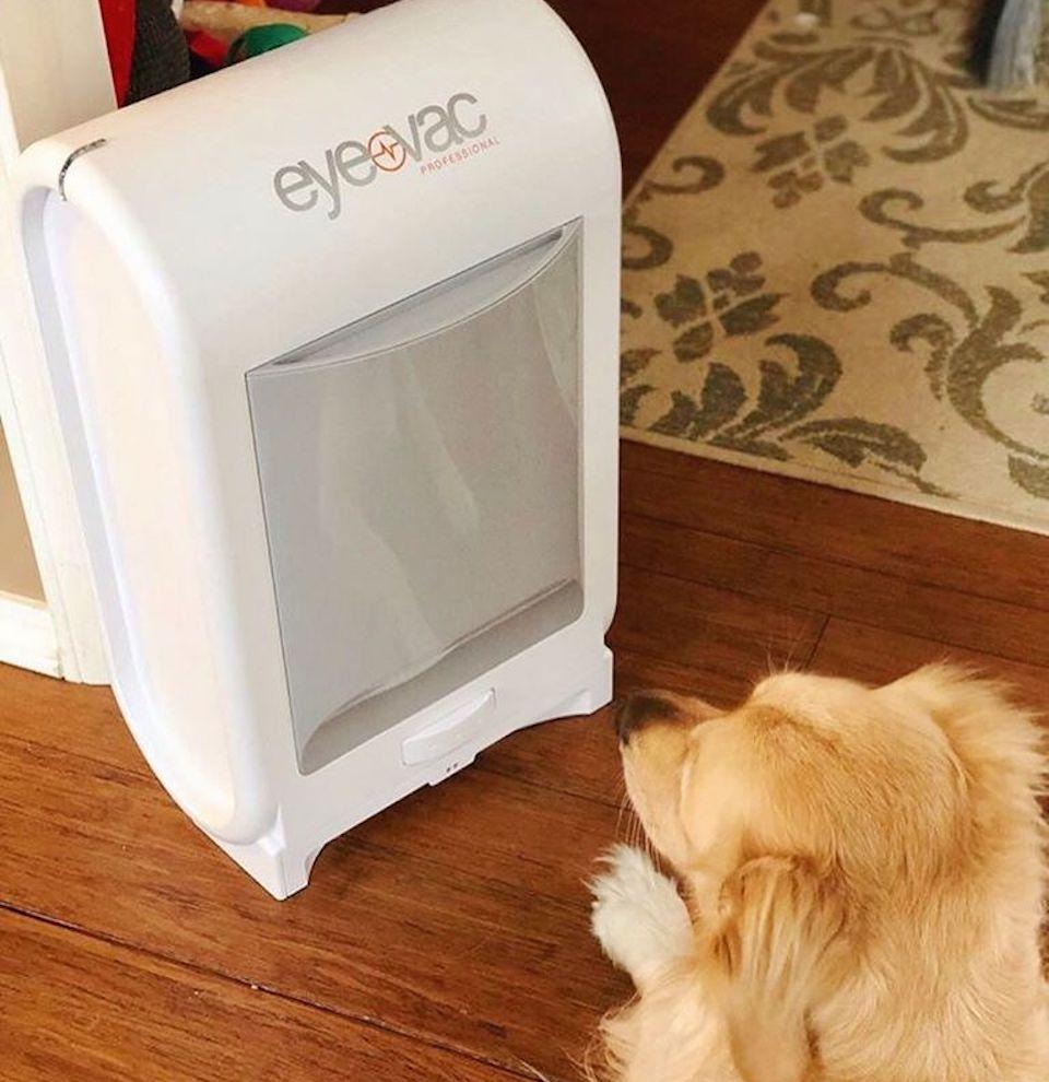 dog staring at an EyeVac Professional Vacuum