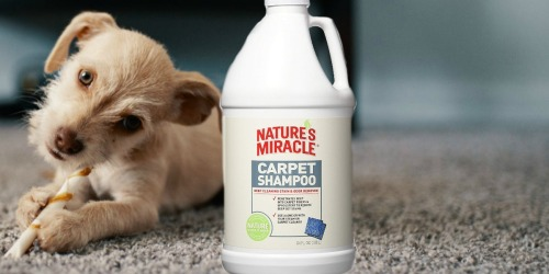 Nature's Miracle 64oz Pet Stain & Odor Carpet Shampoo Only $4.73 Shipped on Amazon