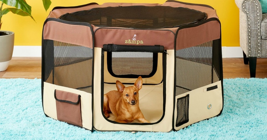 Medium sized play pen for pets with small dog inside in living room setting
