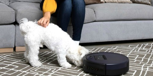 Up to 50% Off bObsweep & Dyson Vacuums + Free Shipping at Home Depot