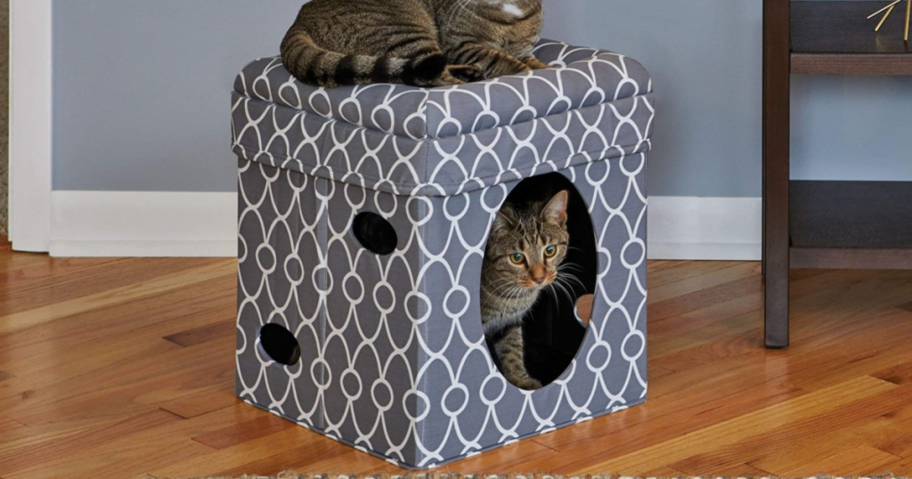 Cats sitting in cat condo from Amazon