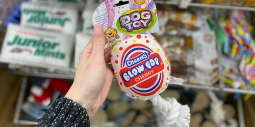 Candy-Themed Pet Toys Only $1 at Dollar Tree | Junior Mints, Blow Pop & More