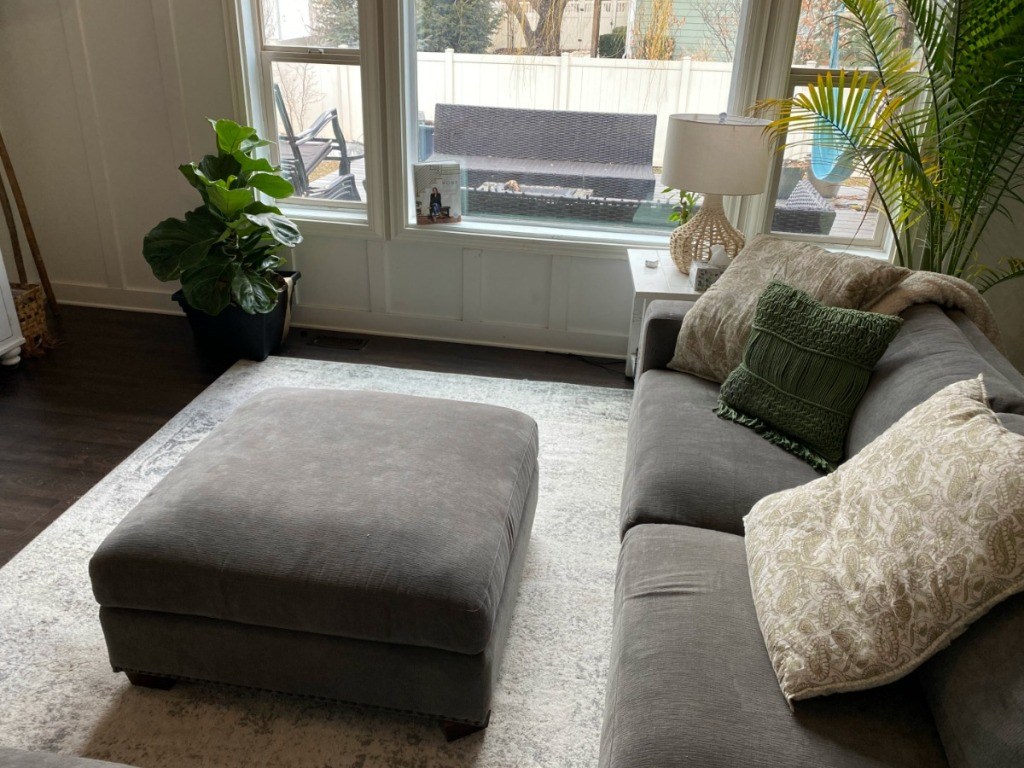 livingroom area with big window, couch, rug, and plants