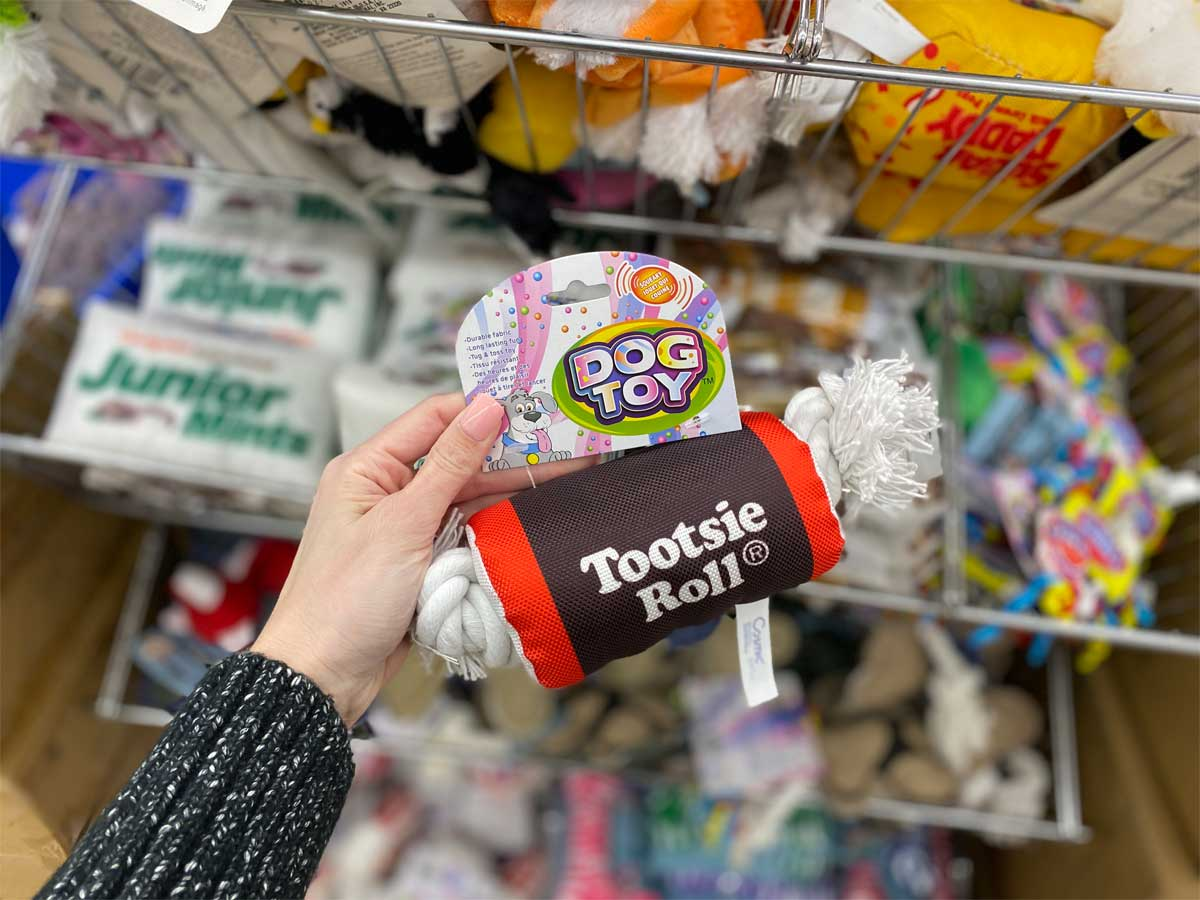 hand holding tootsie roll dog toy