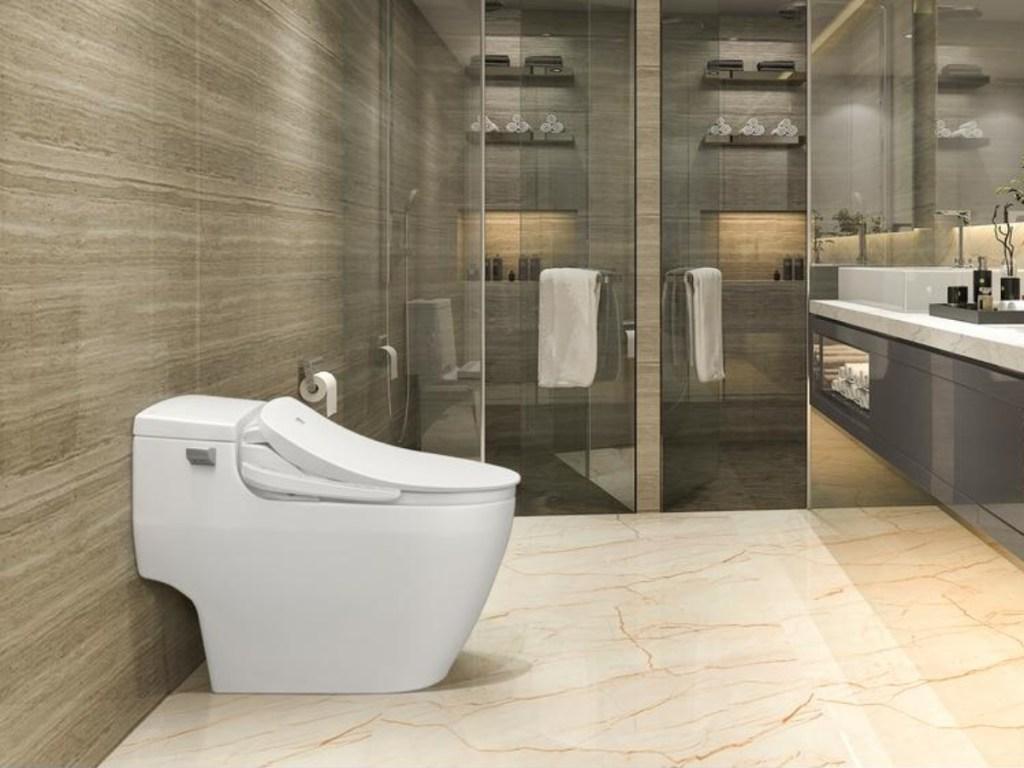 toilet with bidet in bathroom