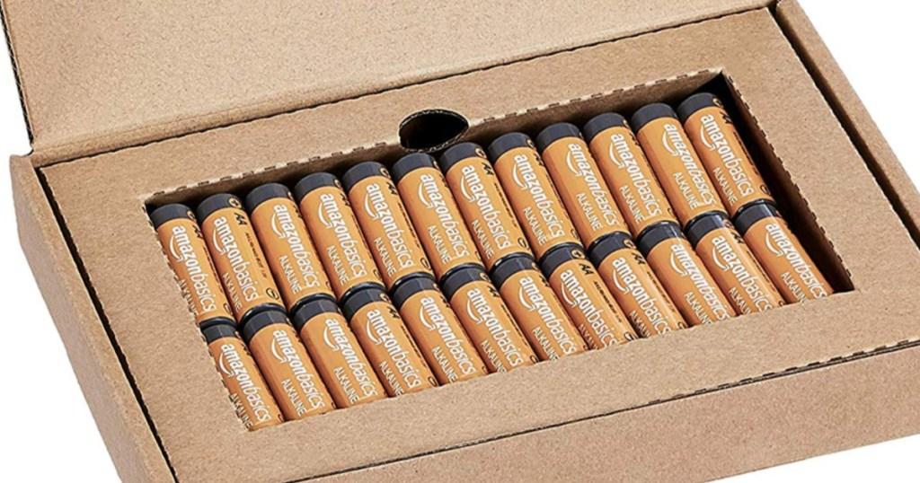 Amazon AA Alkaline Batteries