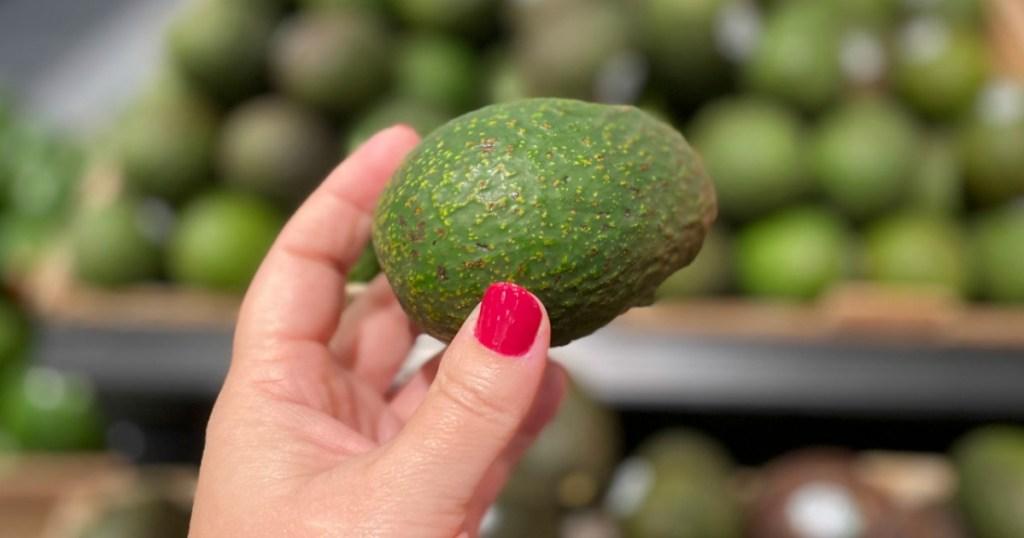 hand holding an avocado