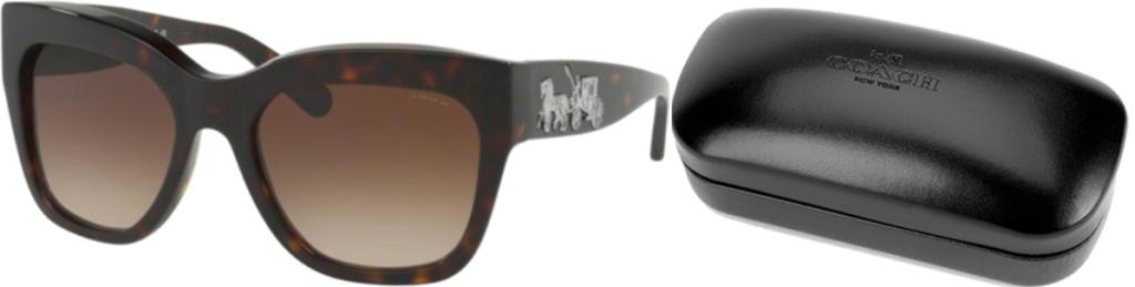 Pair of tortoise shell women's square framed sunglasses near Coach brand case