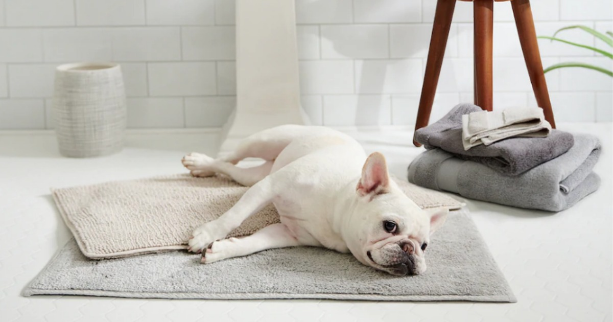 Quick Dry Bath Rug Only 20 99 Shipped