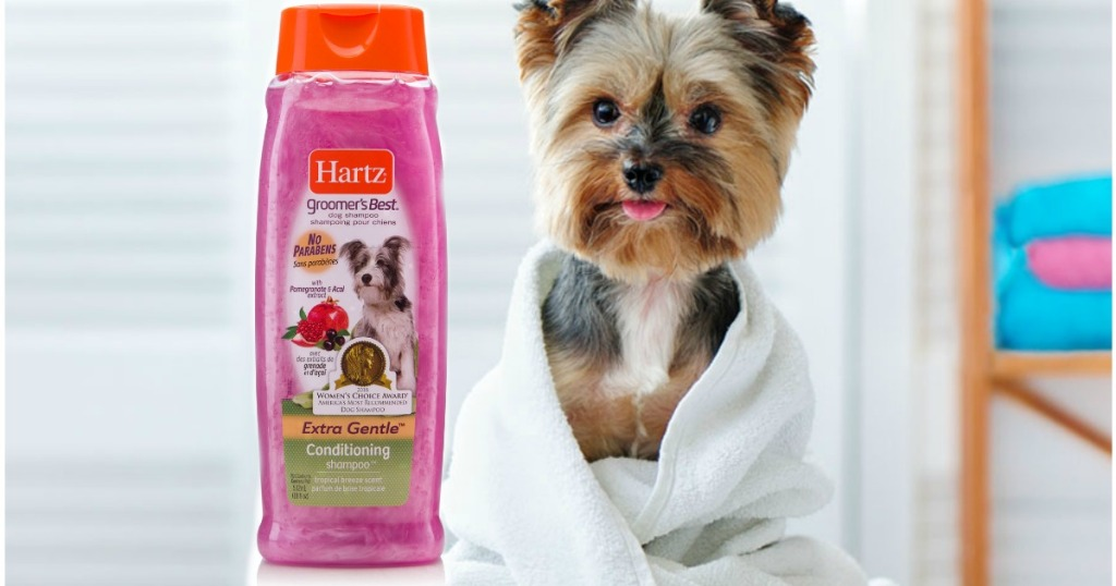 bottle of dog shampoo next to a dog wrapped in a towel