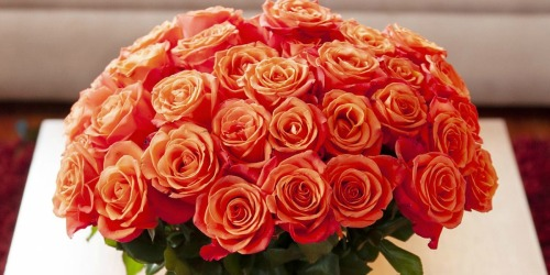 FIFTY Roses as Low as $39.98 Shipped | Free Delivery For Valentine's Day