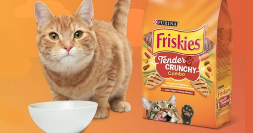 Purina Friskies Cat Food stock image showing cat and empty bowl