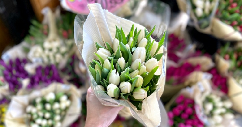 hand holding bouquet of Trader Joe's tulips