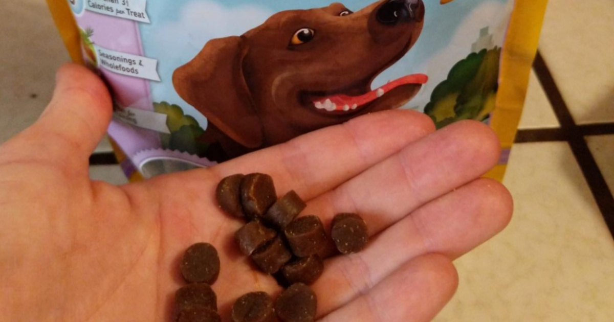 hand holding dog treats in front of treat bag