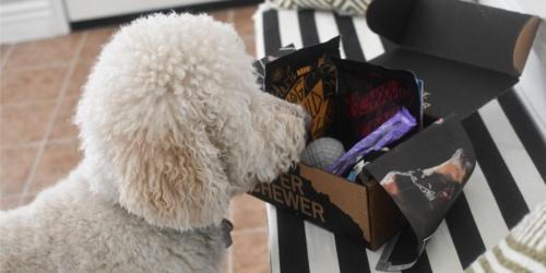 DOUBLE Your First Super Chewer BarkBox | Includes Dog Toys, Treats & More