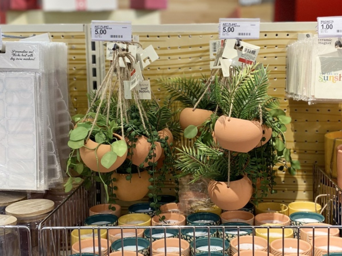 miniature hanging plant's in Target's Dollar Spot