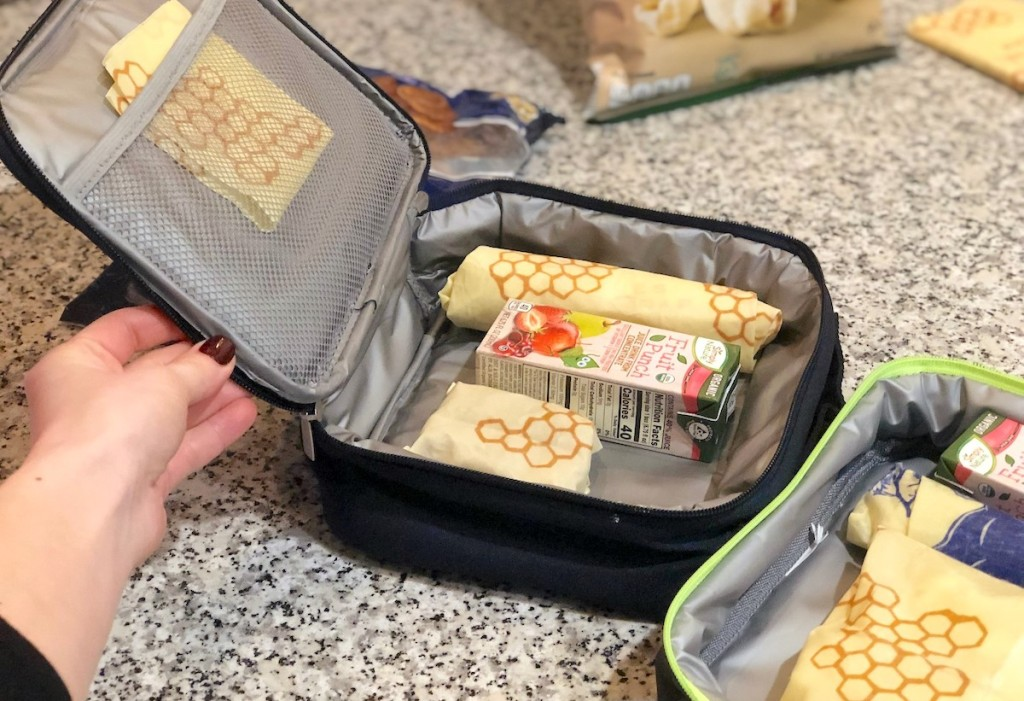 hand holding a lunchbox with food inside