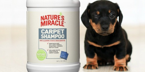 Nature's Miracle Carpet Shampoo Only $4.73 Shipped or Less on Amazon (Regularly $21)