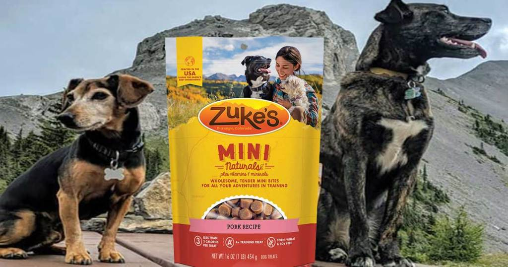 two dogs posing with mountains in the background and a bag of dog treats