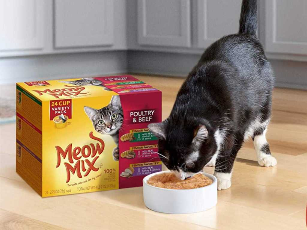 black and white cat eating meow mix