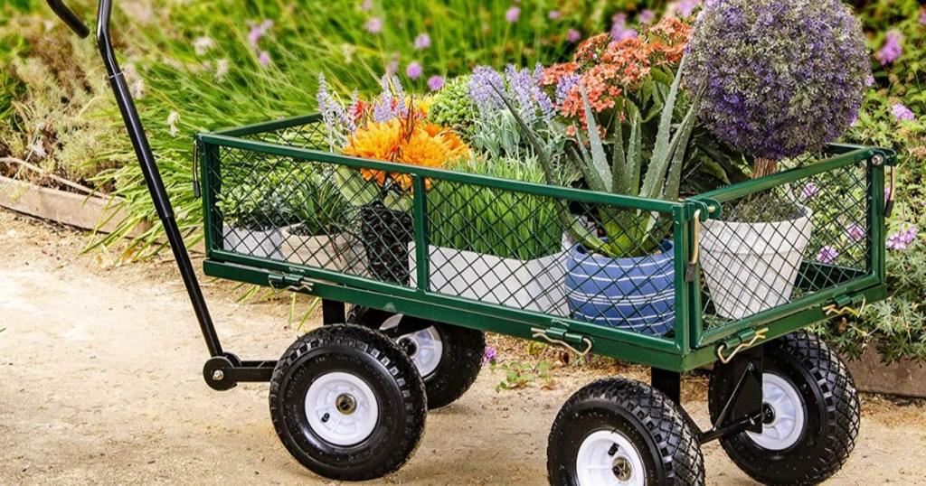 green garden steel cart with flowers inside of it