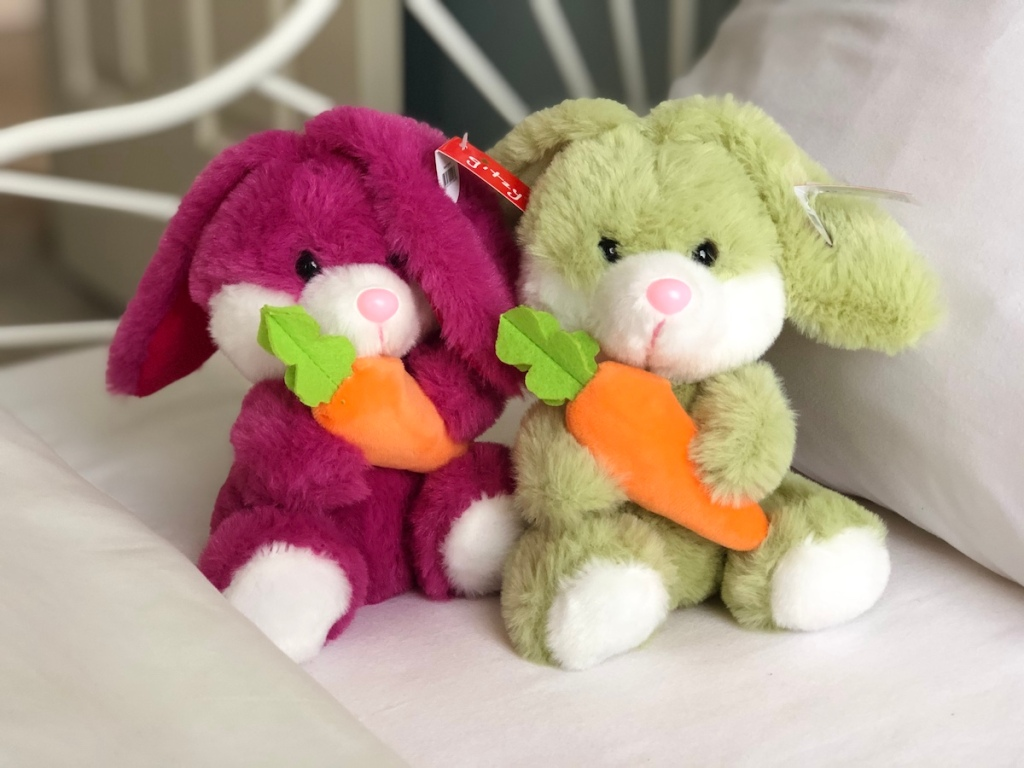 two plush bunnies holding carrots