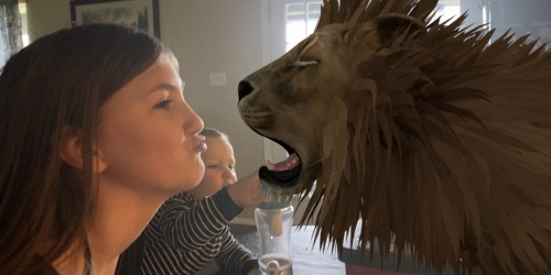 Take an In-Home Safari with Google's 3D Animals (It's Free & Awesome for All Ages)