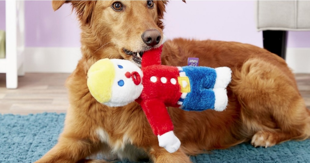 Dog with Mr. Bill Pet Toy in his mouth