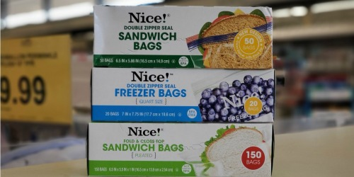 Nice! Sandwich, Freezer or Storage Bags Only 93¢ Each at Walgreens | In-Store & Online