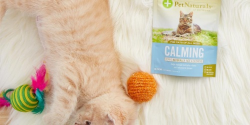 Cat Calming Soft Chews 30-Count Only $2.46 Shipped on Amazon (Regularly $9)