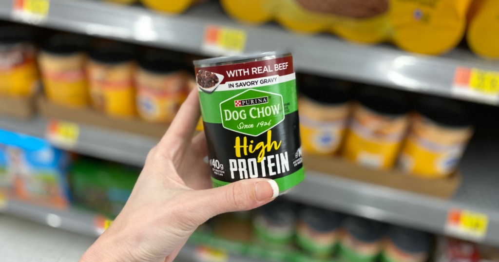 hand holding Purina Dog Chow High Protein