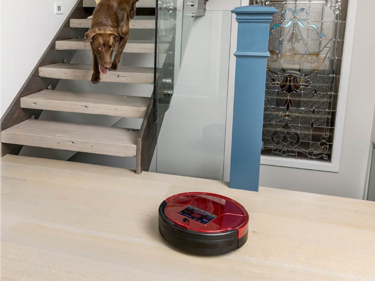 red bobsweep vacuuming with dog coming down the stairs