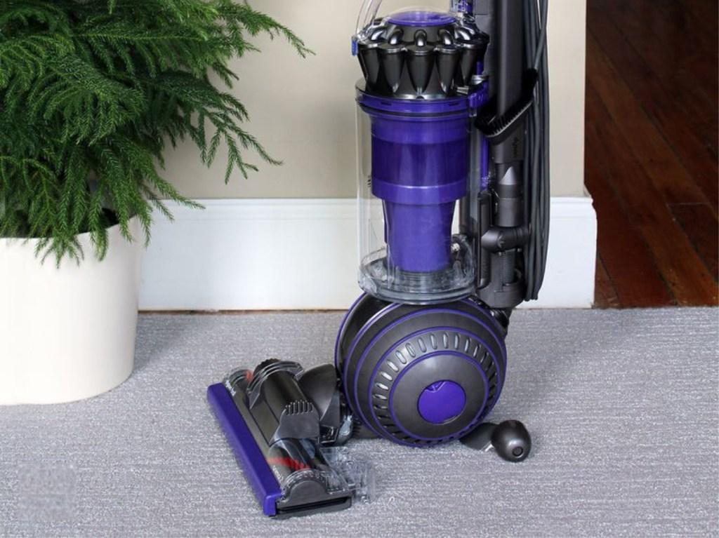 Purple vacuum on carpet next to flant