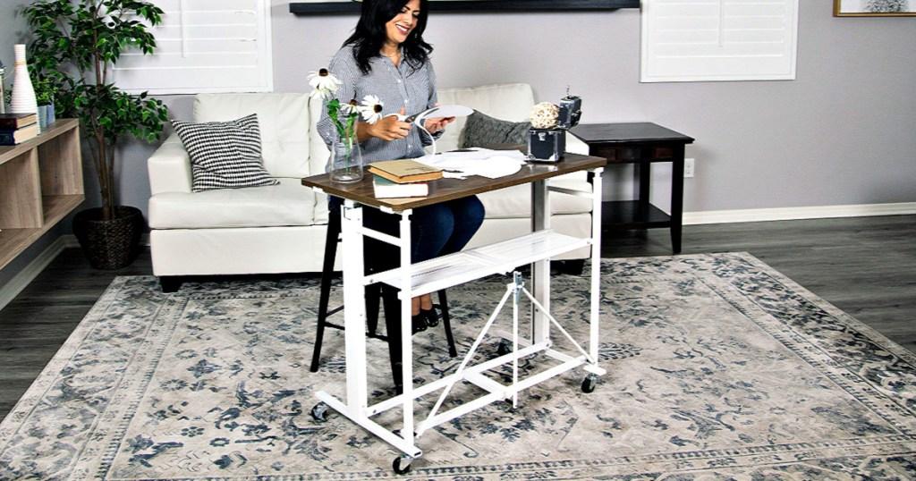 Sit-Stand Adjustable Fold-Away Desk & Workstation