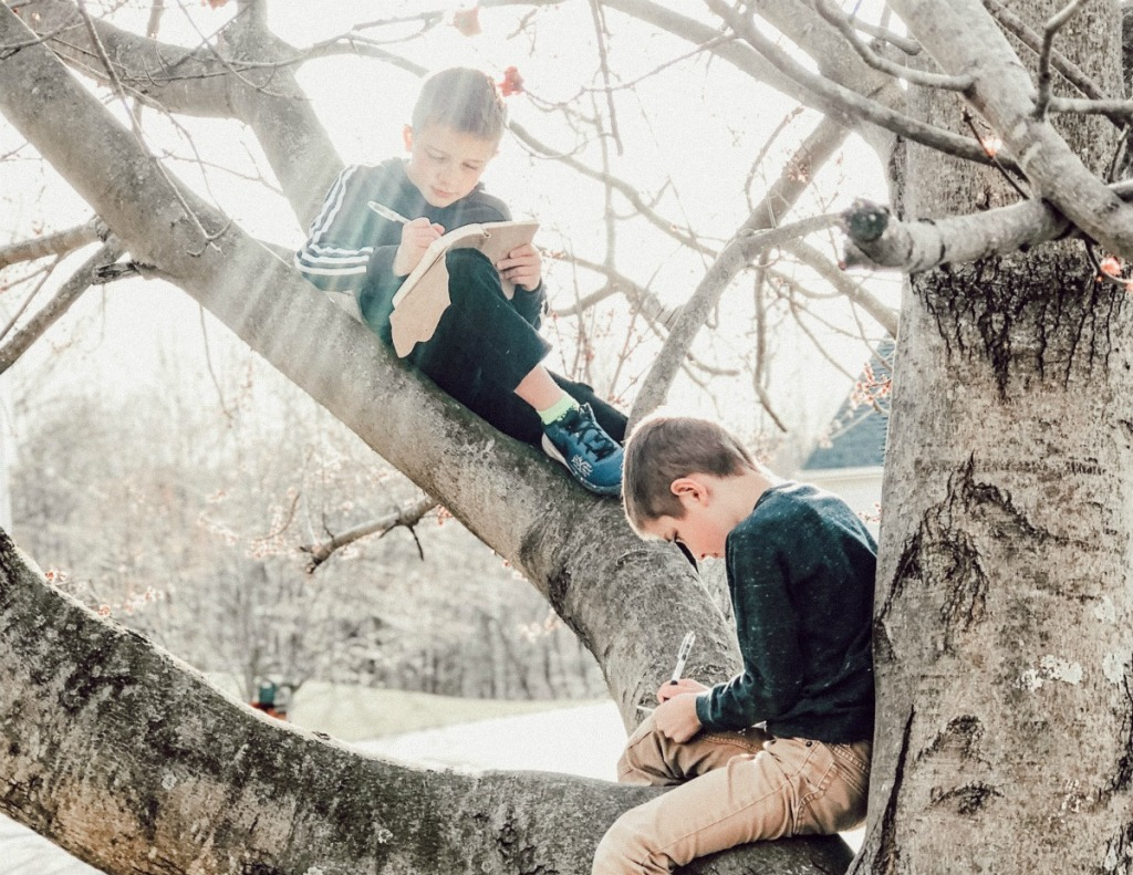 boys writing in a journal in a tree