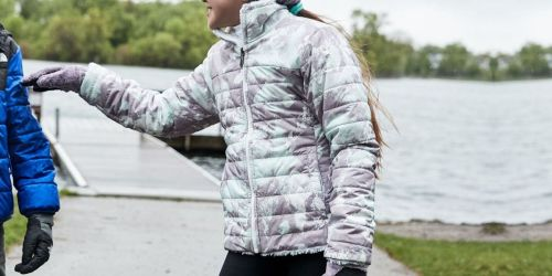 Up to 50% Off The North Face Jackets at Dick's Sporting Goods