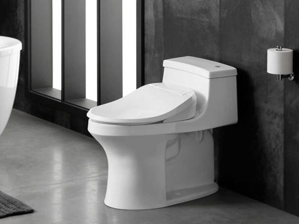 Kohler Electric Bidet Seat for Elongated Toilet