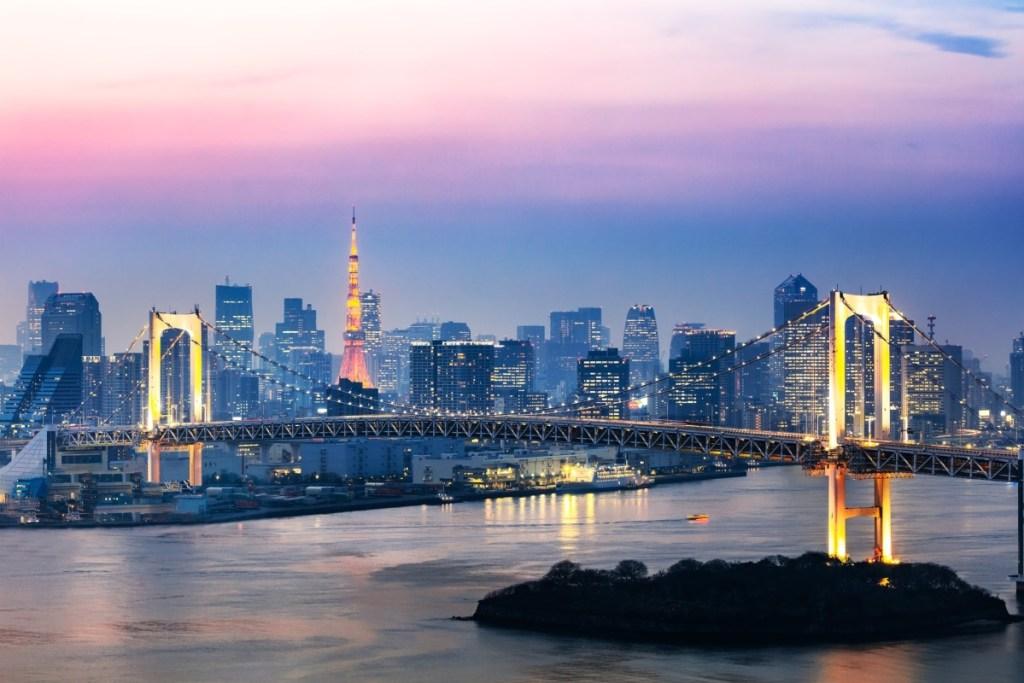 Tokyo bridge and skyline