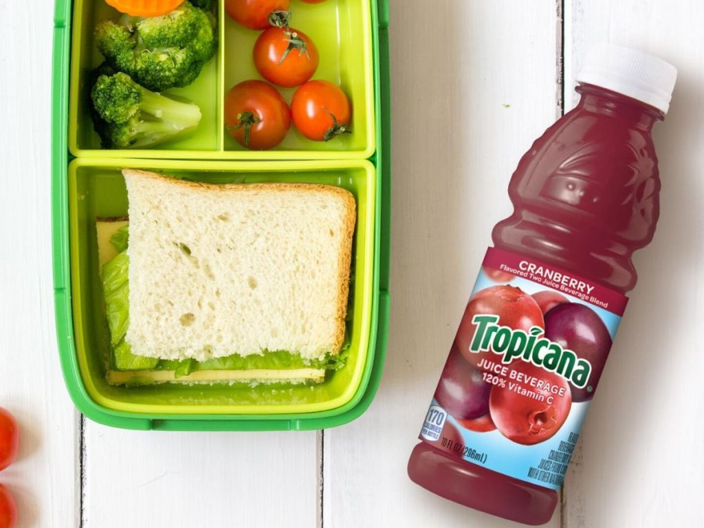 kids partitioned lunch box with sandwich, carrots and broccoli in another compartment and cherry tomatoes in another compartment with bottle of cranberry juice next to it