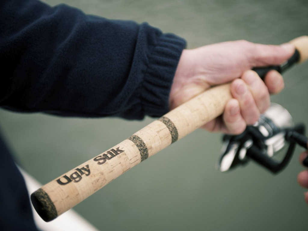 hand holding fishing rod by lake