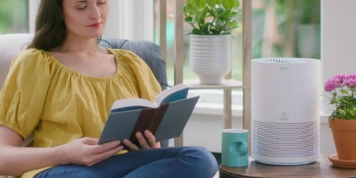 BISSELL Personal Air Purifier as Low as $41.99 Shipped on Kohl's (Regularly $120) | Curbside Pickup