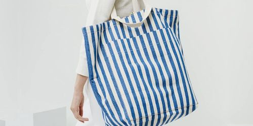 Baggu Oversized Canvas Tote Bag Only $20 on Amazon (Regularly $62)