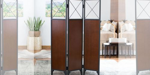 Living Room Divider Only $64 Shipped on Walmart.com (Regularly $142)