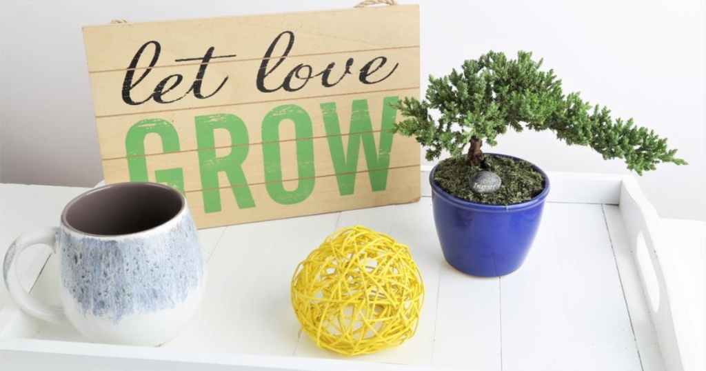 Costa Farms Petite Bonsai Juniper plant on white table with sign that says let love grow, coffee up, and yellow yarn ball